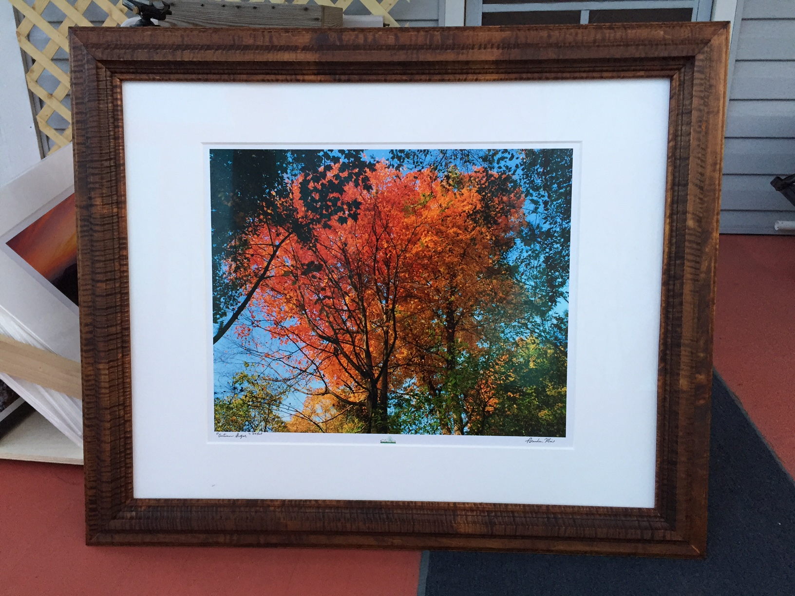 Curly Maple Frame w/ color burned in using Aquafortis, Museum Glass, 6-ply Crescent Select White Matboard