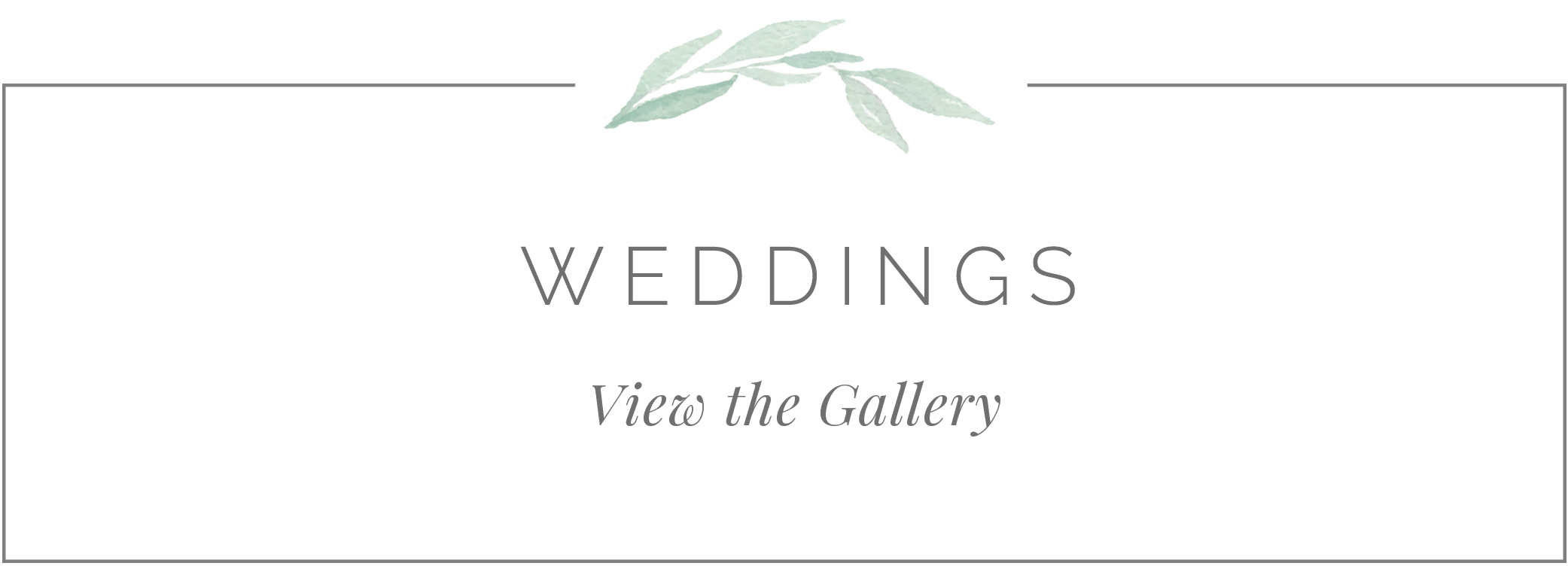 weddinggallerybutton 5 9 18.jpg
