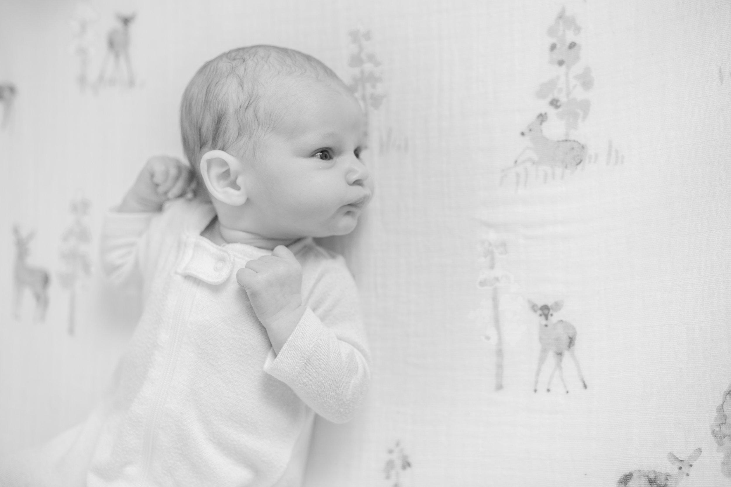 Levi Newborn Photos-44.jpg