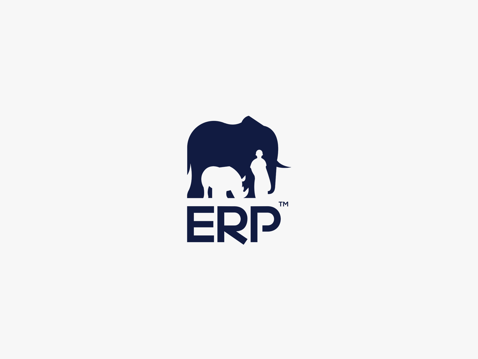 ERP.png