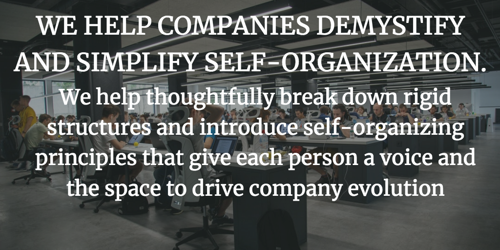 WE HELP COMPANIES DEMYSTIFY AND SIMPLIFY SELF-ORGANIZATION.  Self-organization is about valuing people in action. We help companies break down rigid structures and introduce self-organizing principles that give each person a voice and the space to drive company evolution.  Discover how you can use emergent organizational models to engage employees and make your company more productive and profitable.