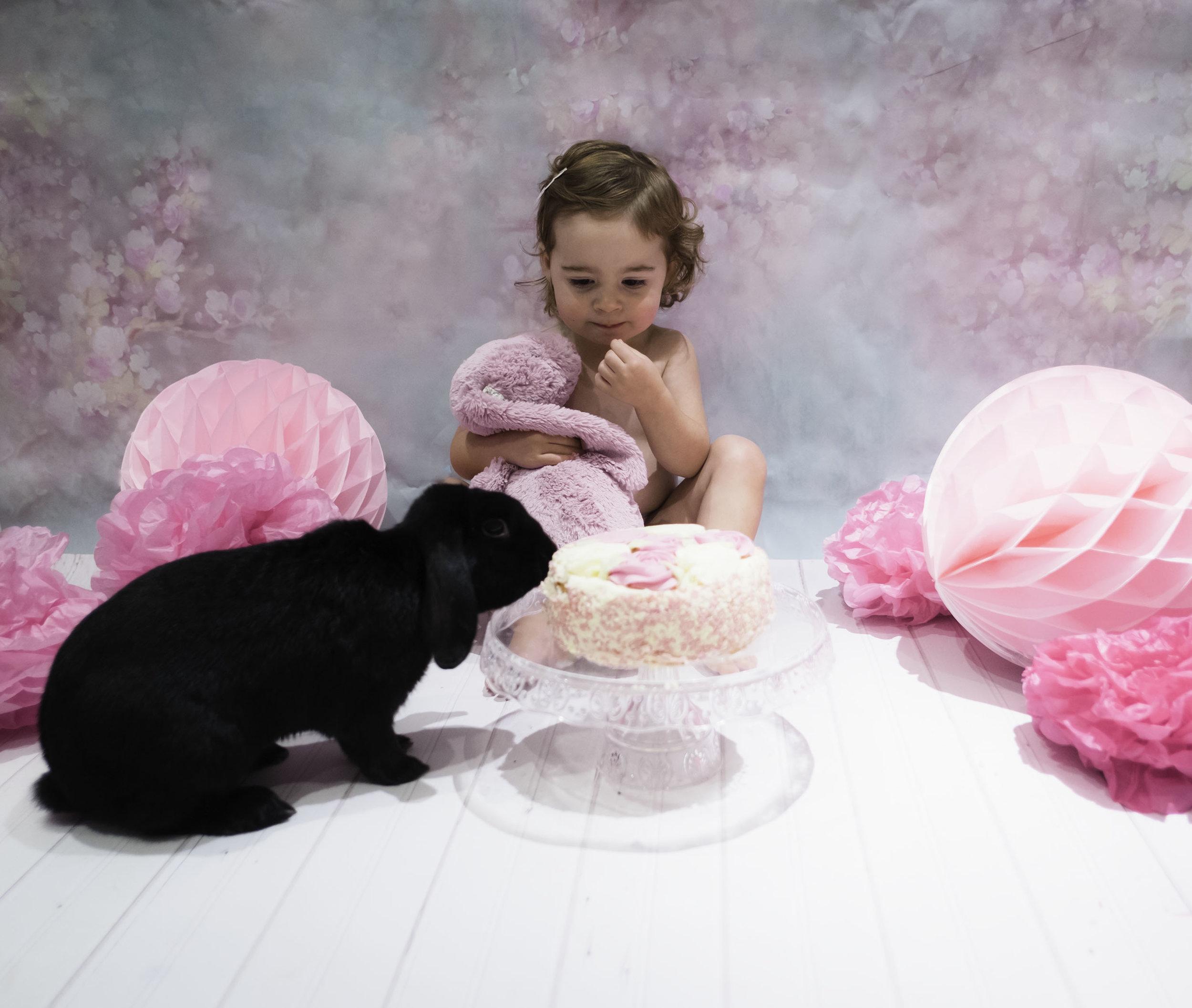 cake smash with pet rabbit