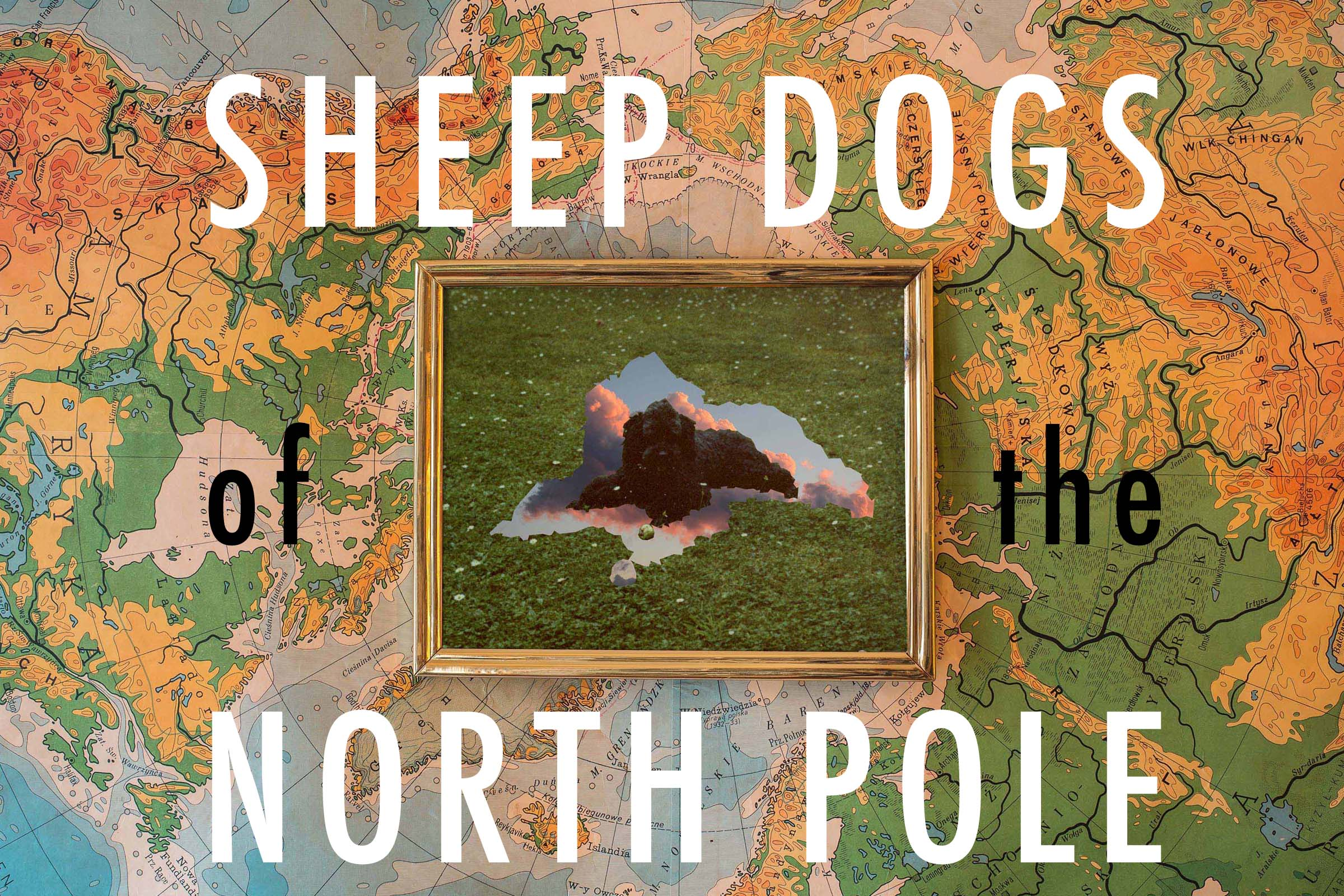 SHEEP DOGS OF THE NORTH POLE