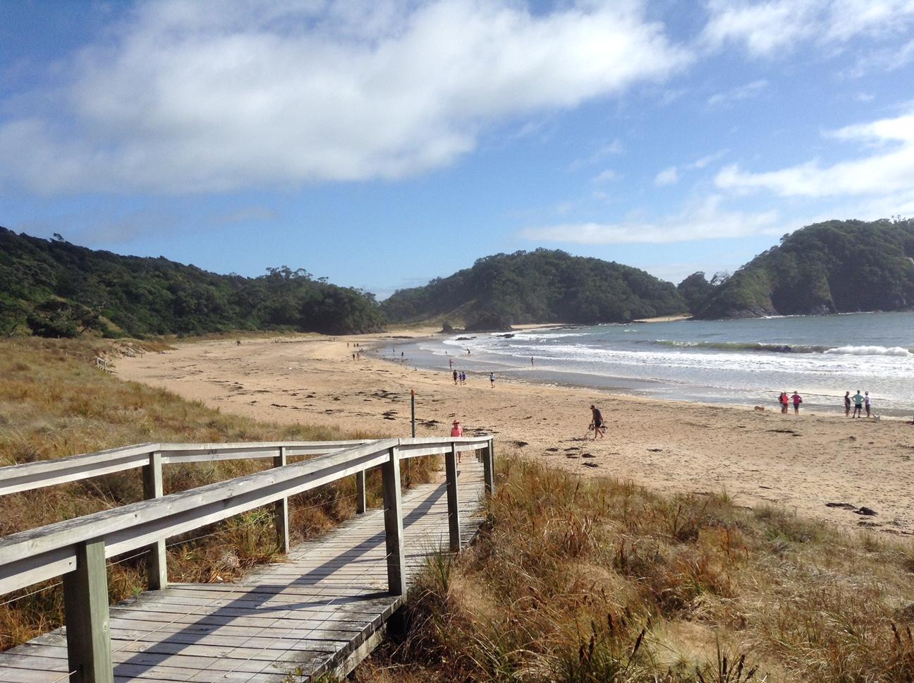 New Zealand beach.JPG