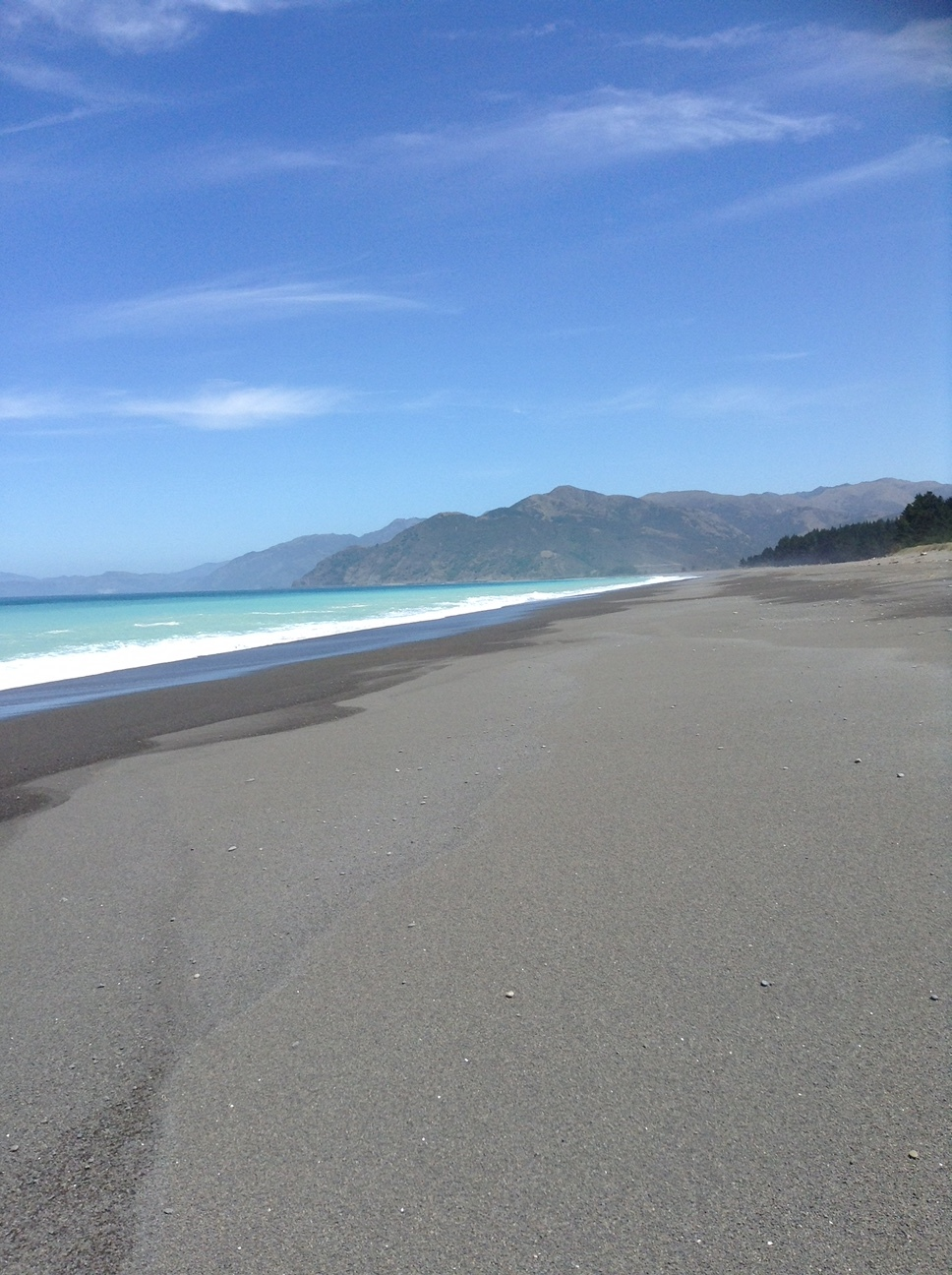Long beach New Zealand south island.JPG