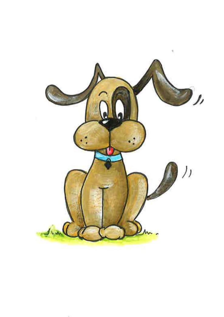 Hond pediatrie-1 (2).jpg