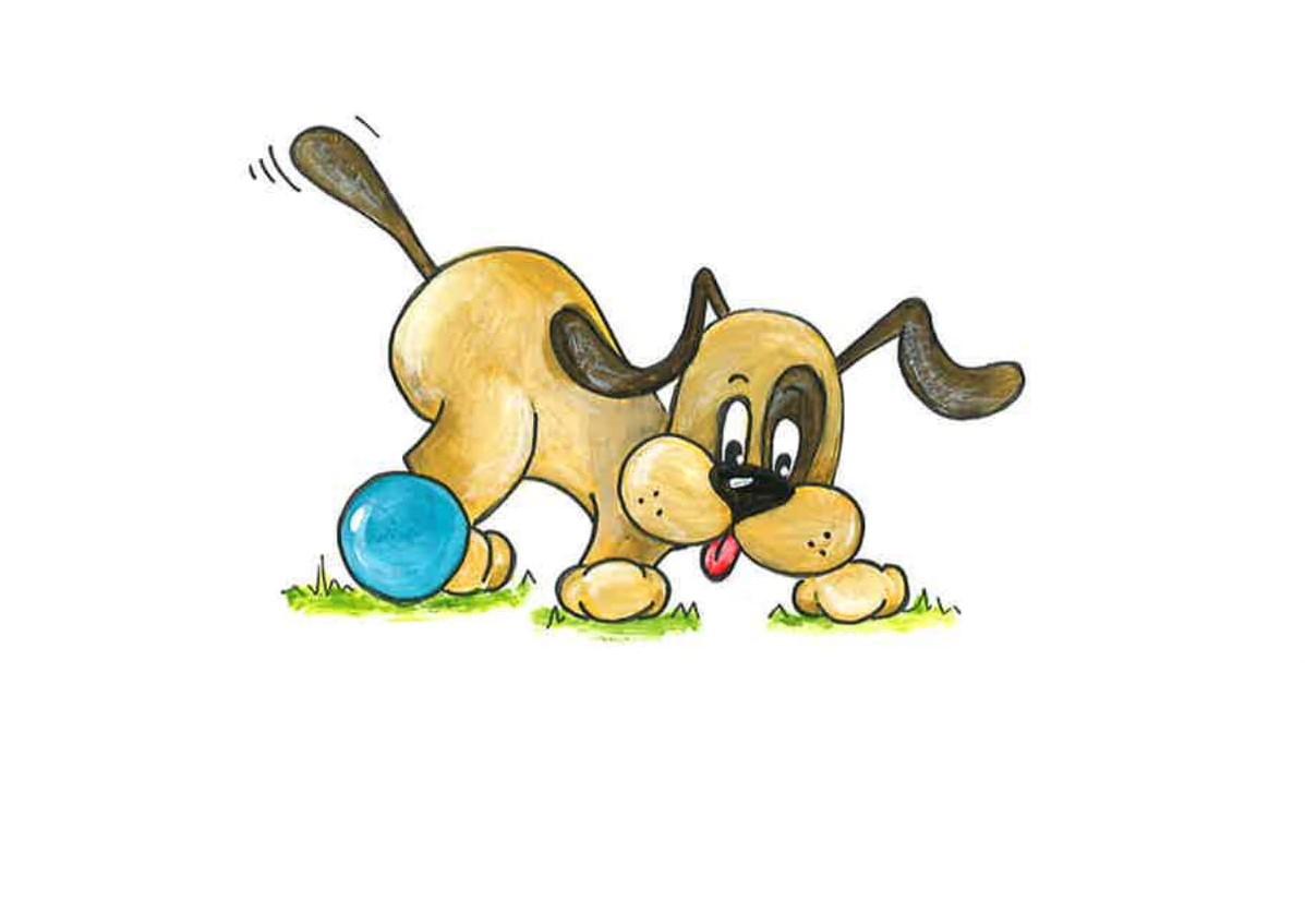Hond pediatrie-1 (3).jpg