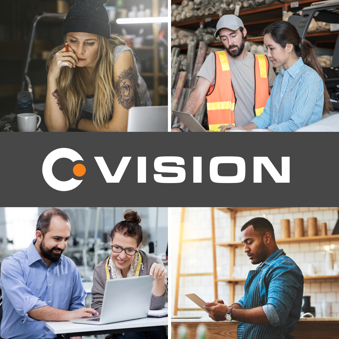 Vision by Crowd Data Systems