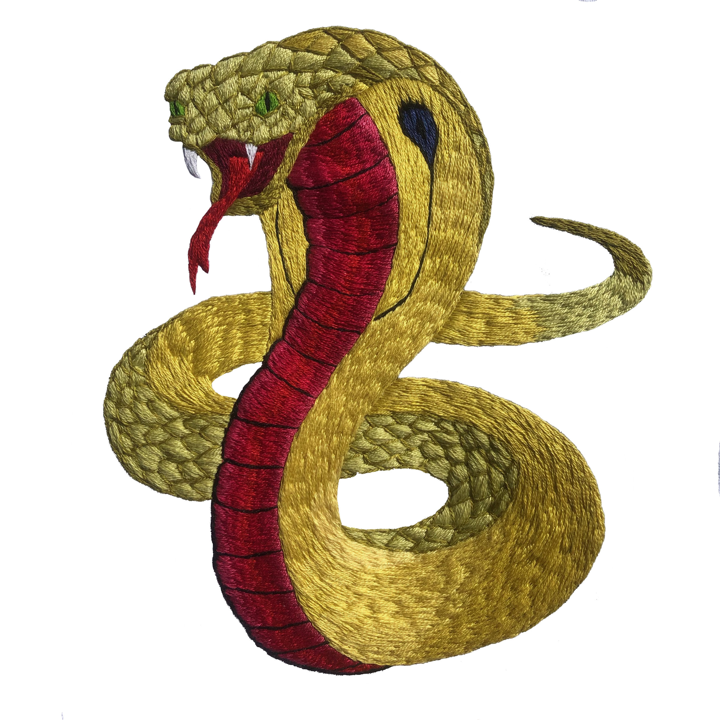 snakeweb.jpg