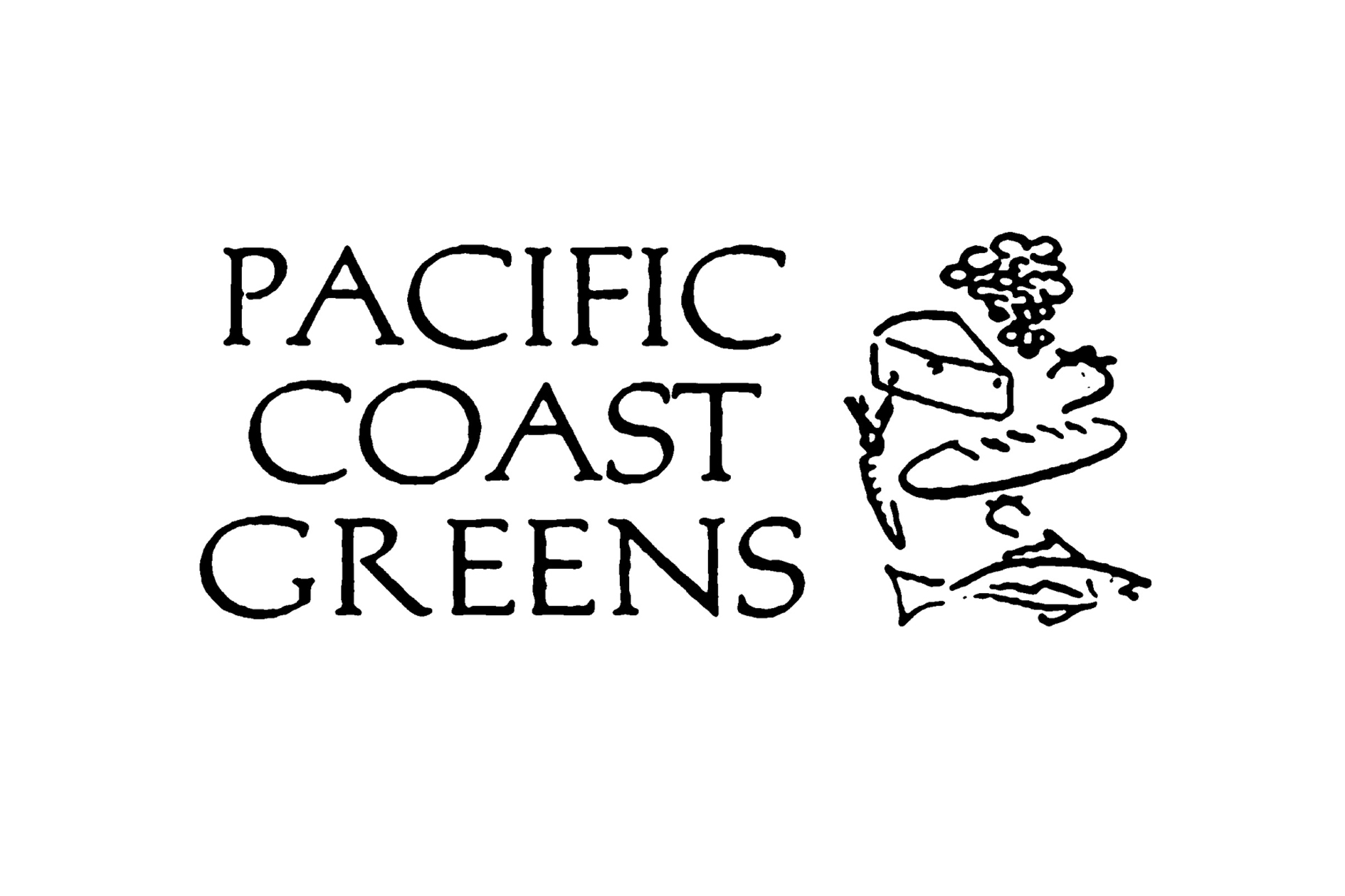 Nuna Pacific Coast Green+.jpg
