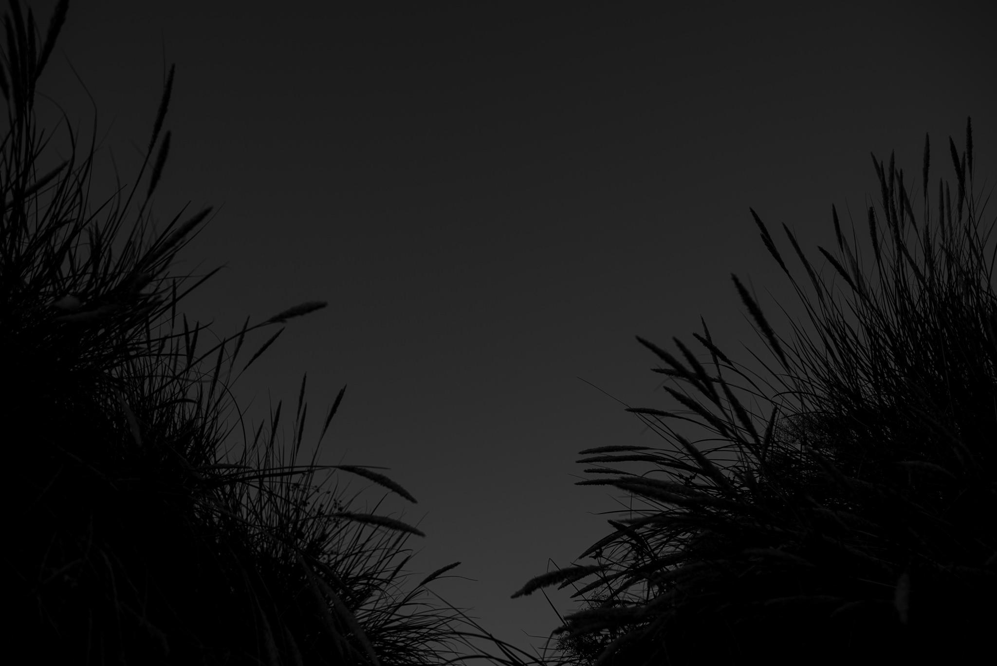 West-Wittering-Beach-Daniel-Robinson-Photography-21.jpg