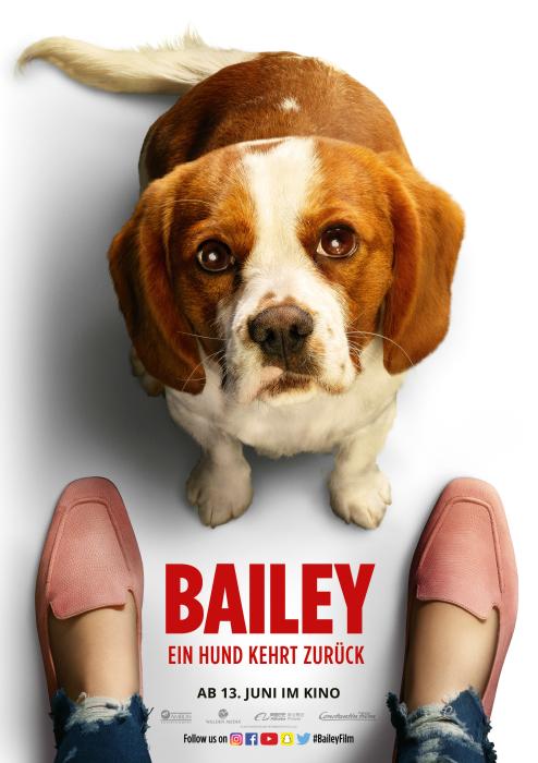 BAILEY2_Plakat_A4_Hund4_700.jpg