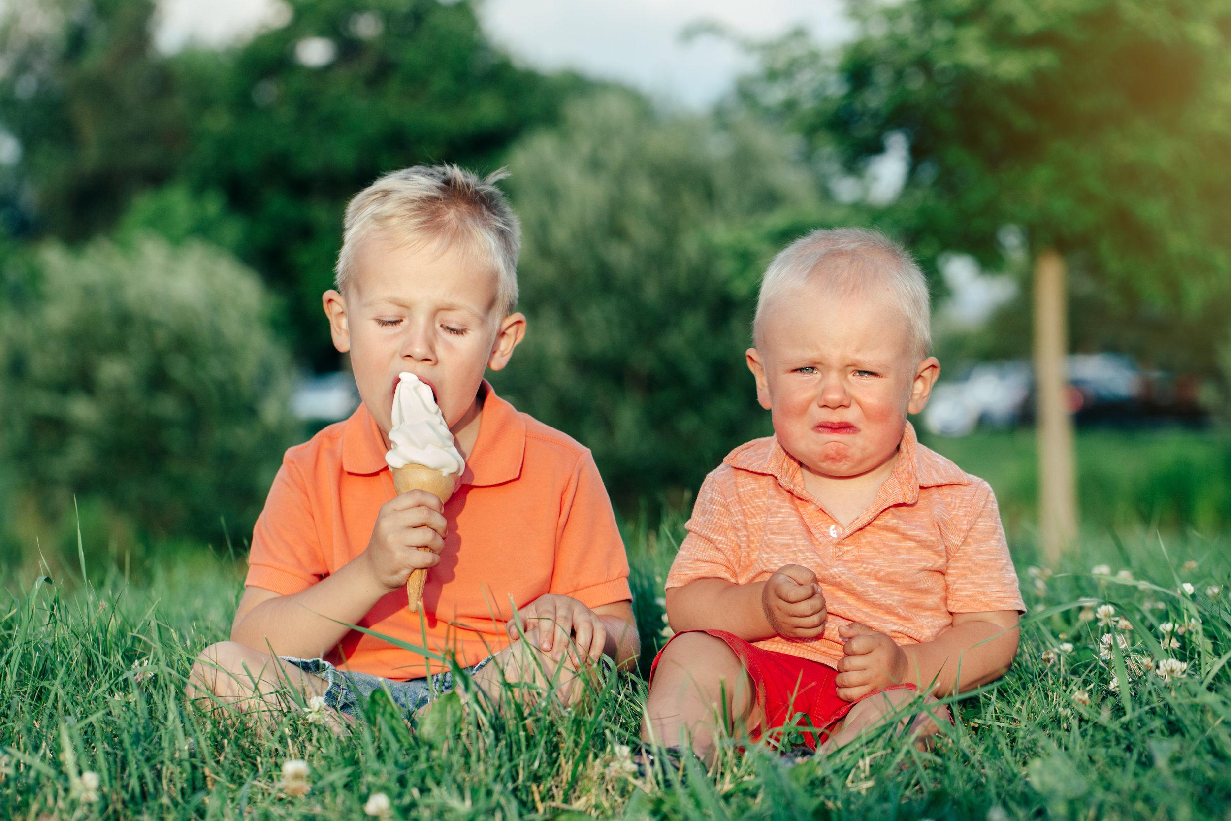 Envy Blog Ice Cream.jpg