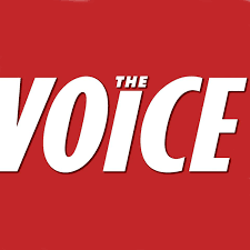 THE VOICE NEWSPAPER - Scotty is interviewed by The Voice, speaking about the Unfamous series.