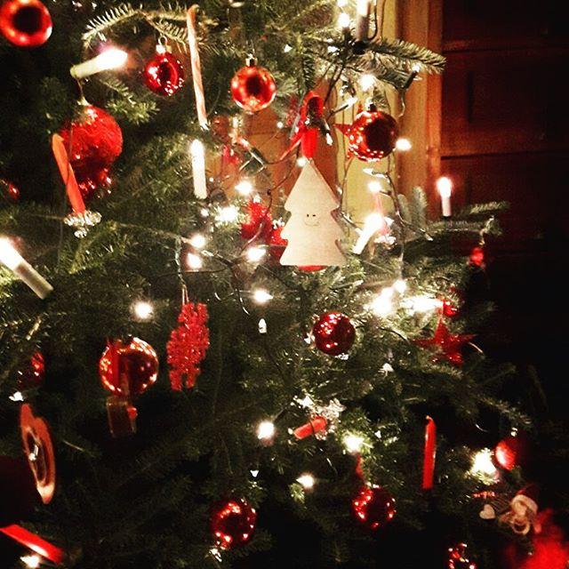 Merrexmas in een prachtige boom in Drenthe! 😍🎄#kerstboomdecoratie #newowner #yay #madefromdumpedchristmastrees #upcycle #recycle #circulair