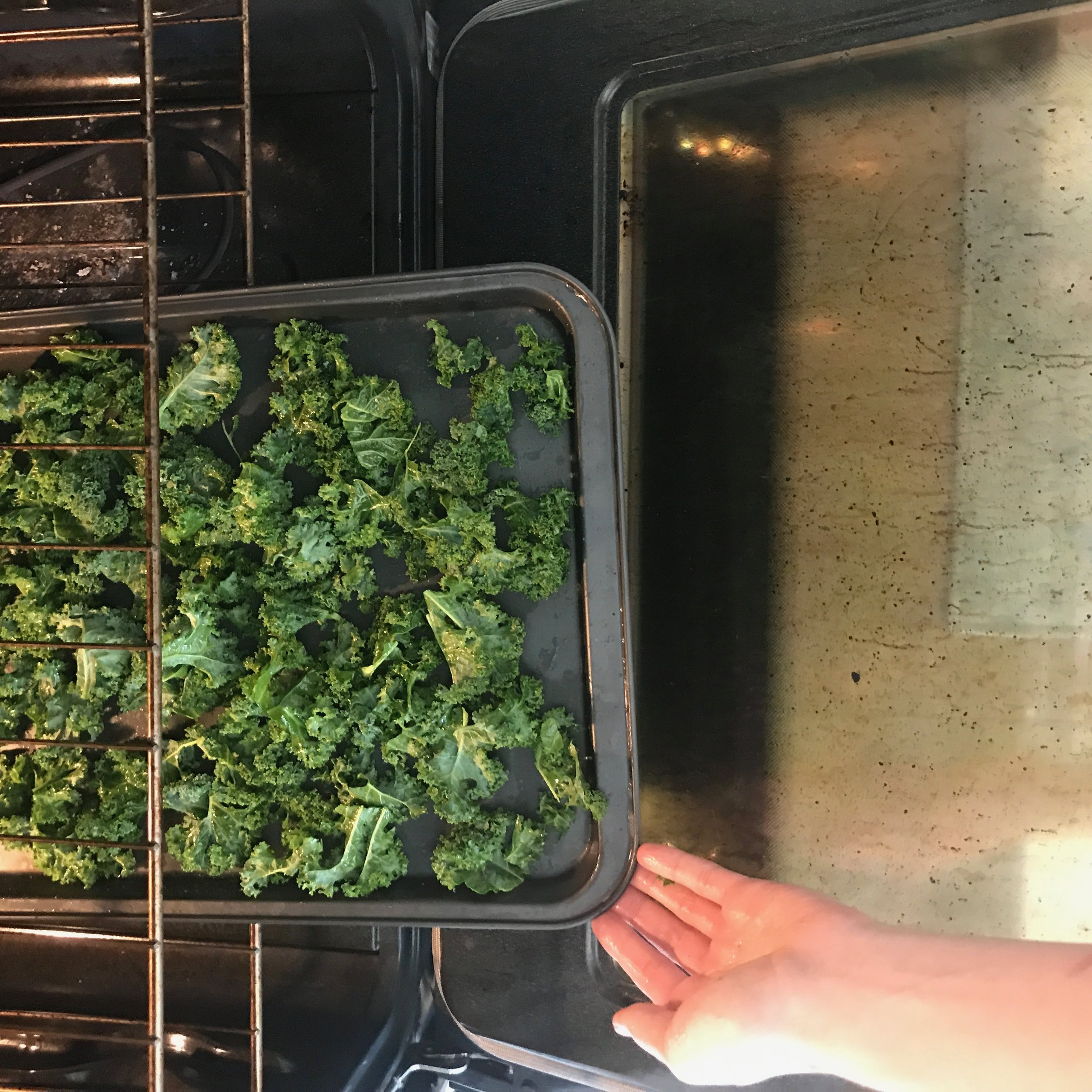 """After two months on my Anit-Candida Diet (ACD)... I was starting to get a little bit loosey goosey. My protocol was pretty """"up to interpretation"""" as far was what wasn't included on the list. I googled it... until I found someone who said I could eat it or not and just went with that. Fast forward to now.  I found a protocol online. I had happened upon this website SO many times when researching about candida... and finally I was scrolling through their program.   * Evidence based, up to date research  * 60 days...  * Five stages  * Guidance, recipes, symptom tracker.  I couldn't believe my eyes. I scrolled down and down, just excited about a program that gave me a little bit more direction and support... and in 60 days. Now that sounded too good to be true. My original protocol was 3 months, but since I was so lax toward the end, I needed to start over with something stricter and fully commit til the end."""