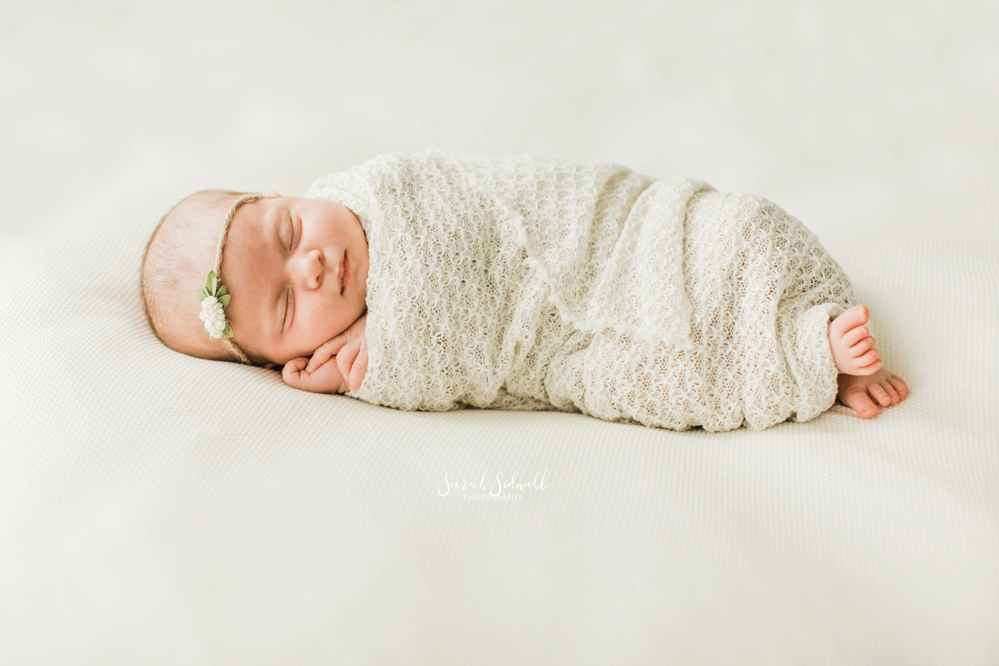 Nashville Newborn Studio Session | Julie Ann