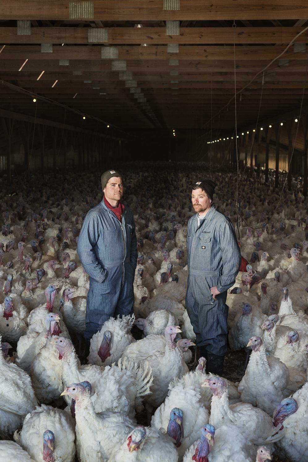 Brad and Grant Moline of Moline Farms, IA