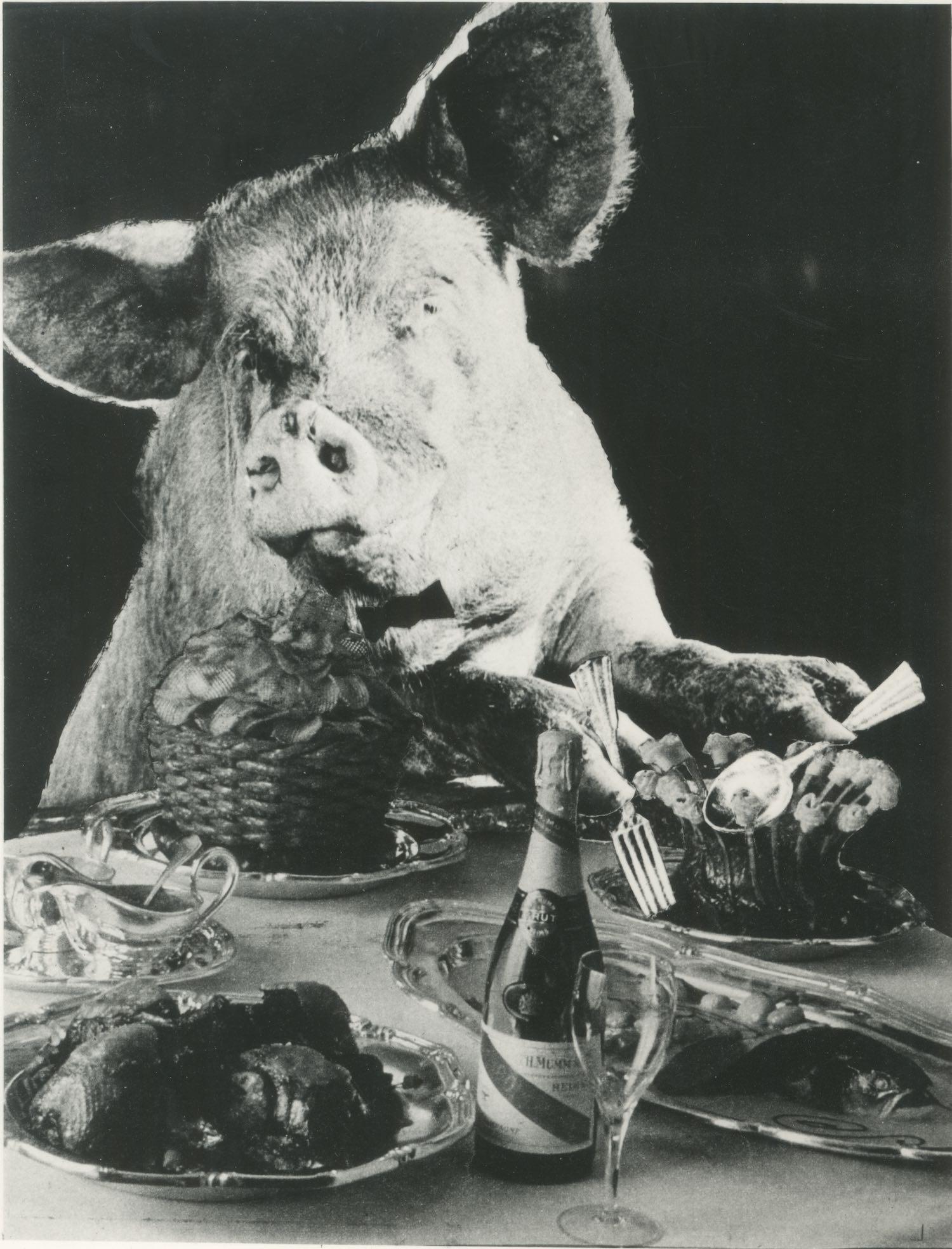 Inner artwork for Kate Tempest's Let Them Eat Chaos