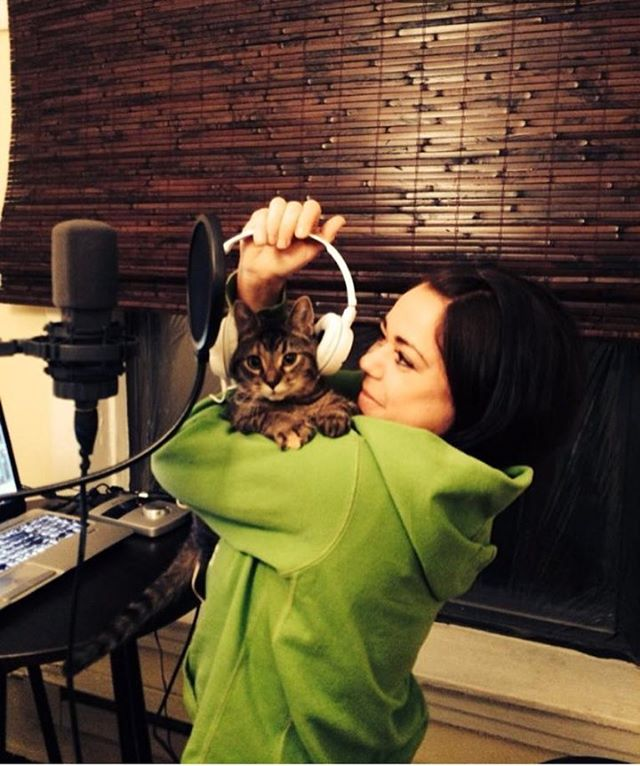 #tbt when kittens sit in on recording sessions ;)