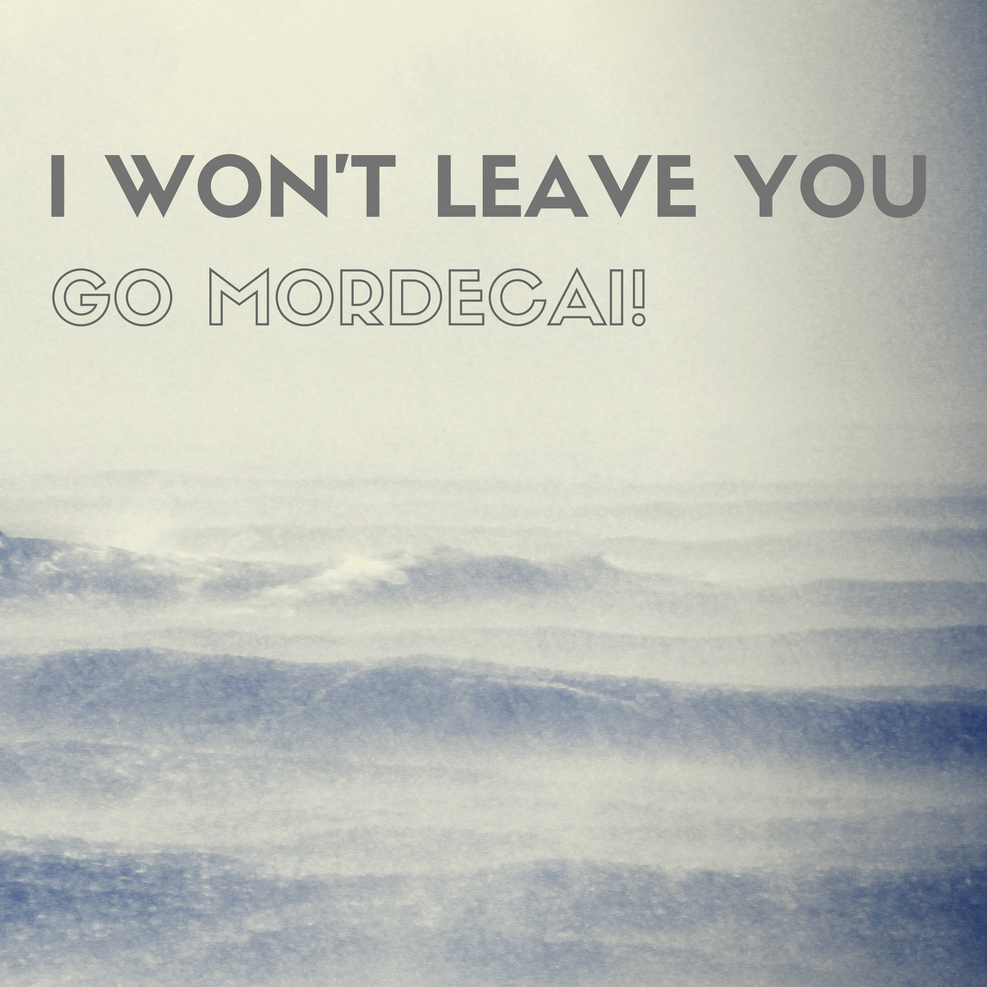 I WON'T LEAVE YOU.jpg