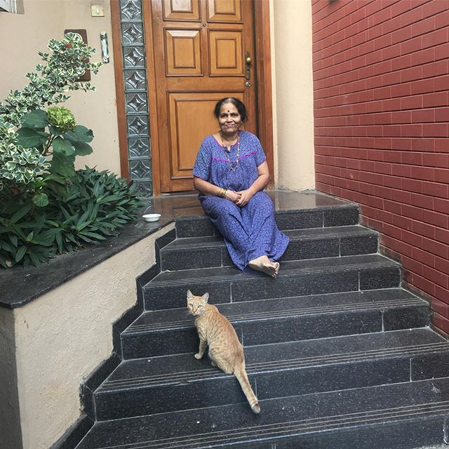 This pregnant stray is friends with my grandma but distrusts most everyone else #india