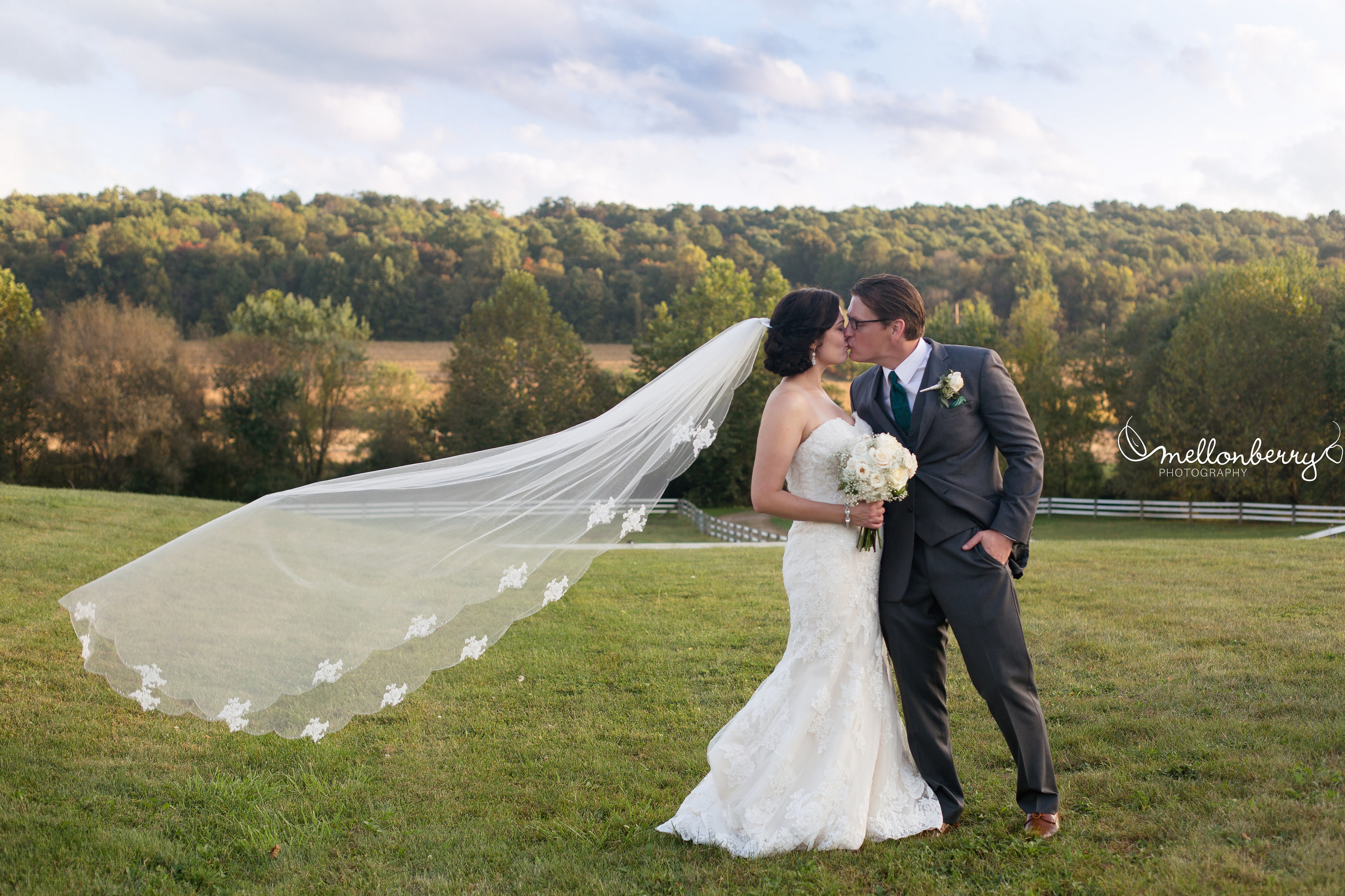 ashleigh and kevin color veil in valley.jpg