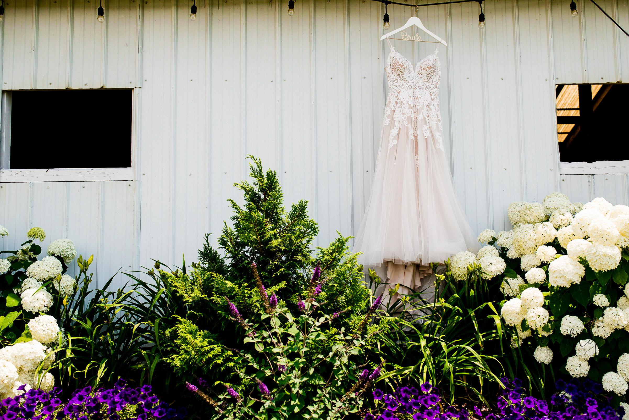 Photos by Emilly - LONG Wedding (1).jpg