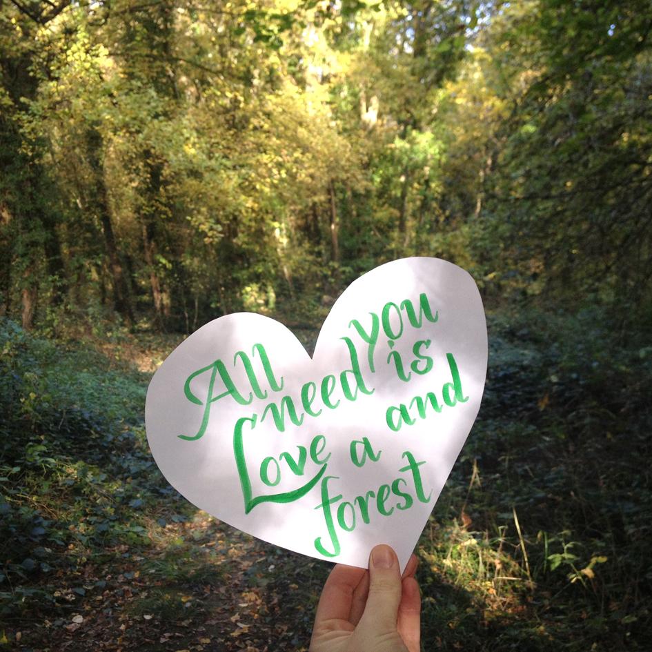 Lettering by Sarah Van Der Linden on Hand Lettering for Beginners