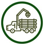 Timber Sales