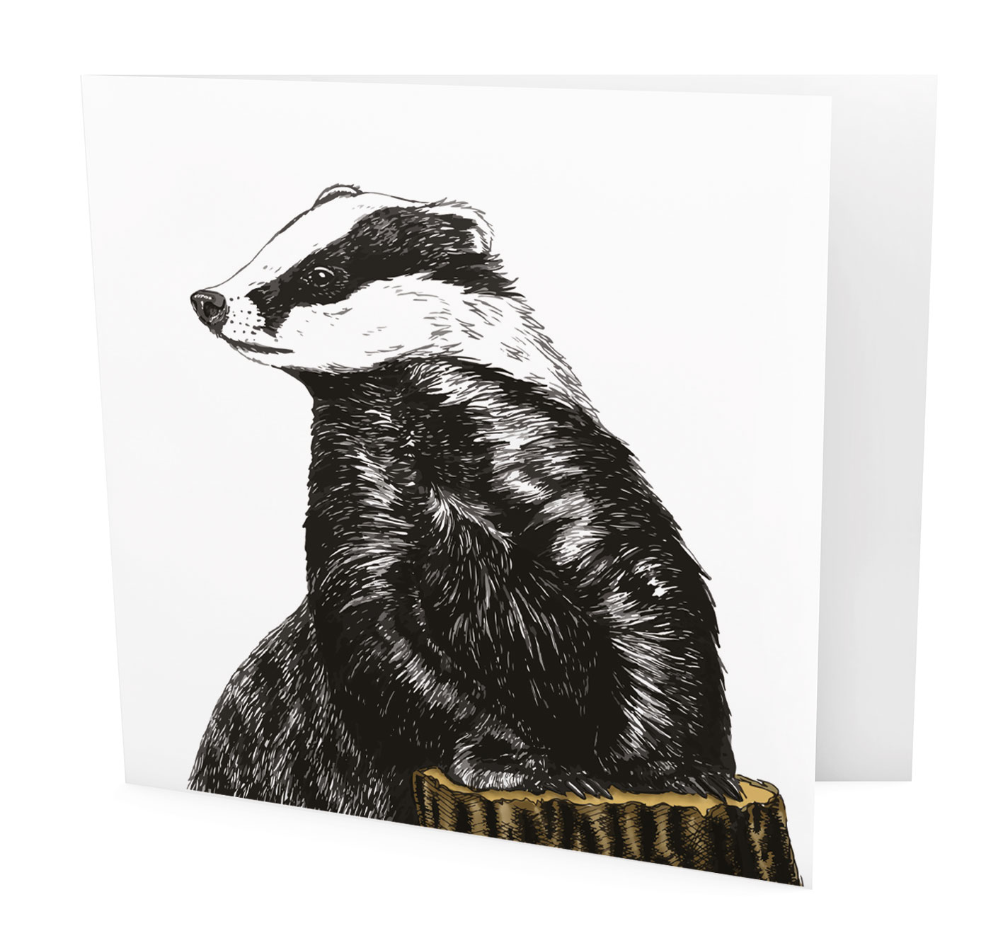 BW05-Badger.jpg