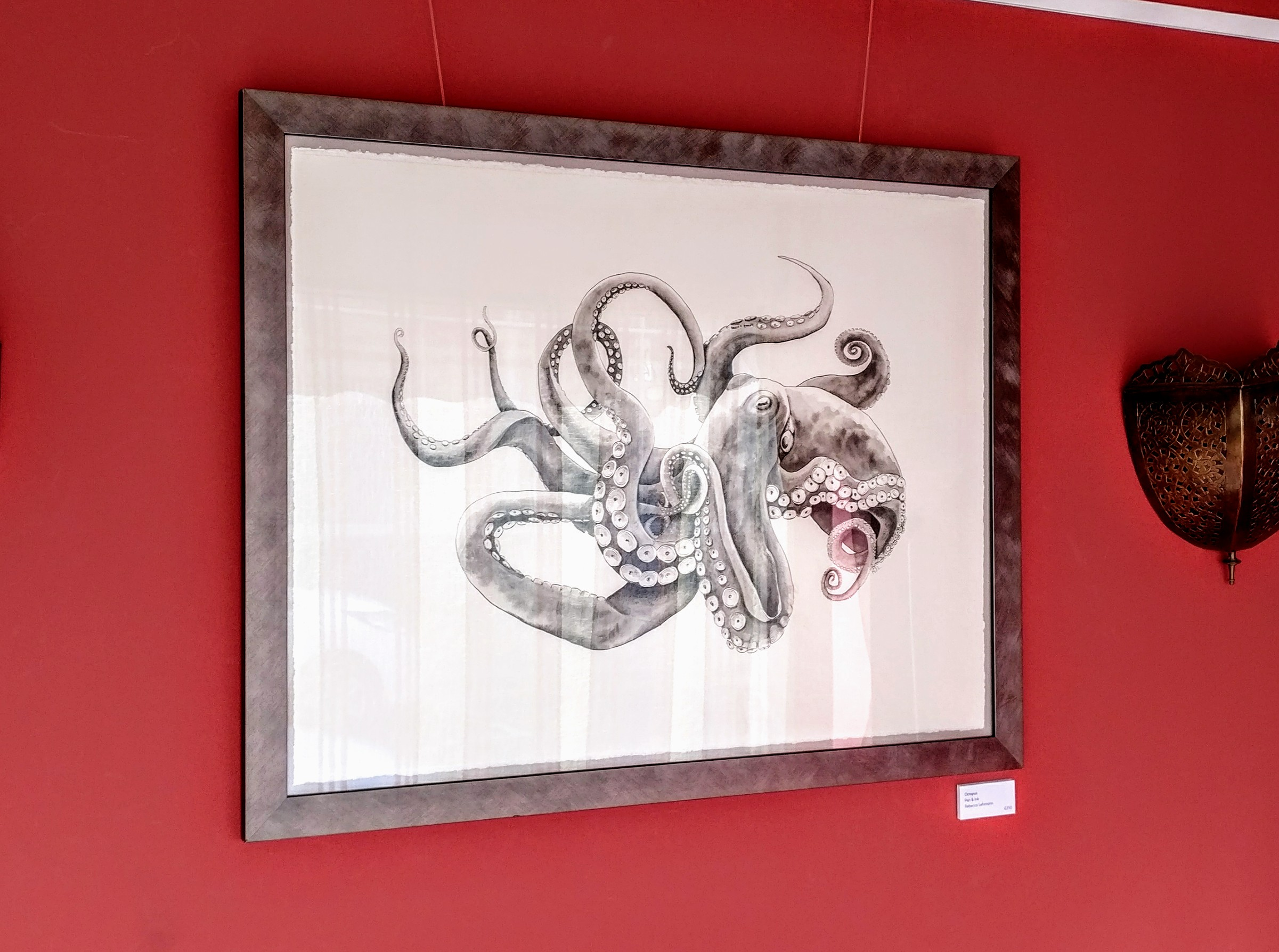 Ocotopus, pen & ink. £250