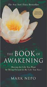 - Spirituality: The Book of Awakening by Mark NepoThis book is not just for summer. It is on my kitchen counter as a handy devotional that I refer to every morning! Mark supplies small nuggets of thought provoking stories to enlighten you on your journey. This book promises to leave you feeling more joyful, grateful, and present among the challenges and stresses of life.