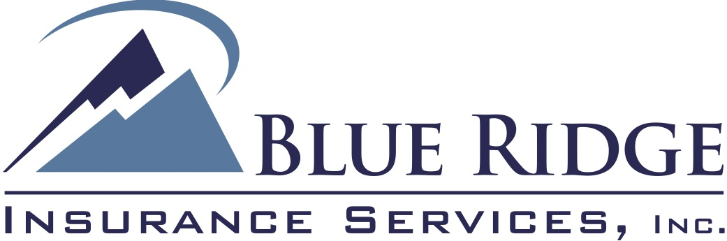 BRIS color logo copy.jpg