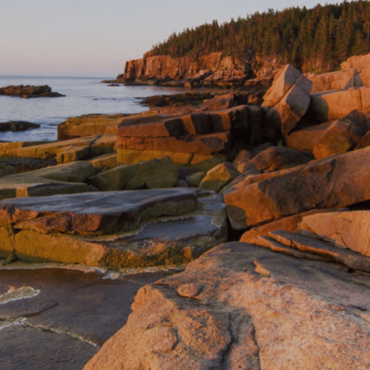 northeast-us-national-park.png