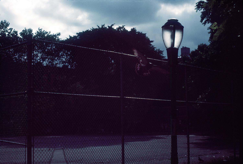 NYC_001.jpg
