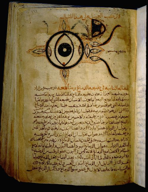 Islamic medical manuscript. Sketch of the eye. Country of Origin: Egypt. Culture: Islamic. Date/Period: Mamluk, 14th C. Credit Line: Werner Forman Archive/ National Library, Cairo Location: 02    Photo Credit:   HIP / Art Resource, NY    Image Reference:   AR9138077