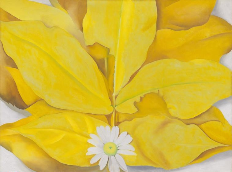 Georgia  O'Keeffe, (1887-1986) © ARS, NY    Yellow Hickory Leaves with Daisy , 1928. Oil on canvas, 76.5 x 101.6 cm (29 7/8 x 39 7/8 in.), Alfred Stieglitz Collection, gift of Georgia O'Keeffe, 1965.1180.    Location:  The Art Institute of Chicago, Chicago, U.S.A.    Photo Credit:  The Art Institute of Chicago / Art Resource, NY    Image Reference:  ART528265