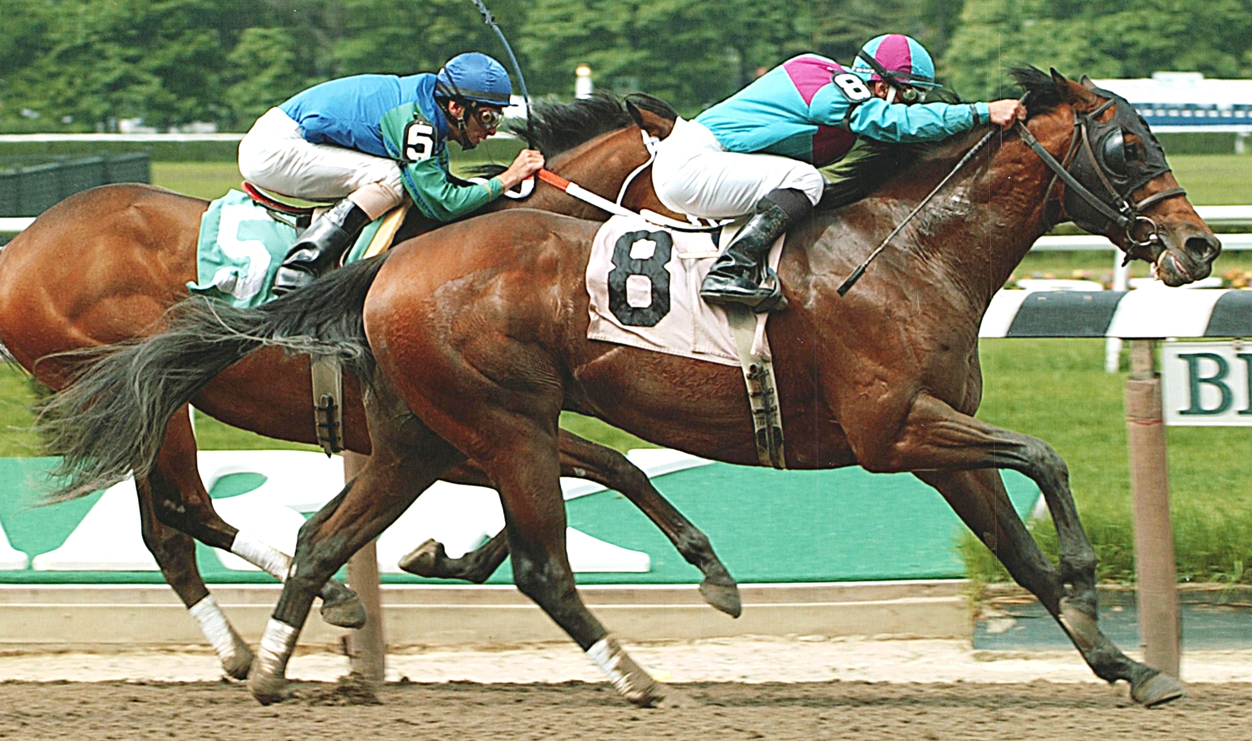 Introspect Wins at Belmont