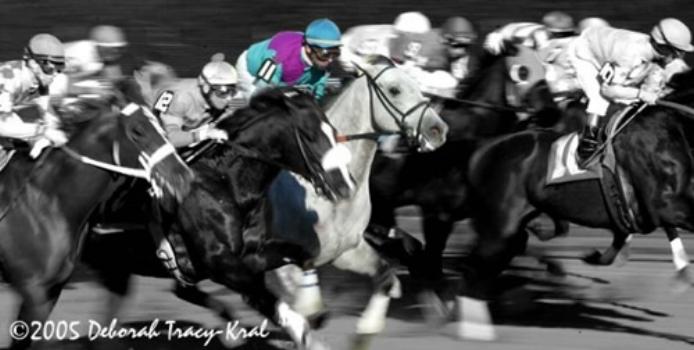 Diligent Gambler Racing_500.jpg