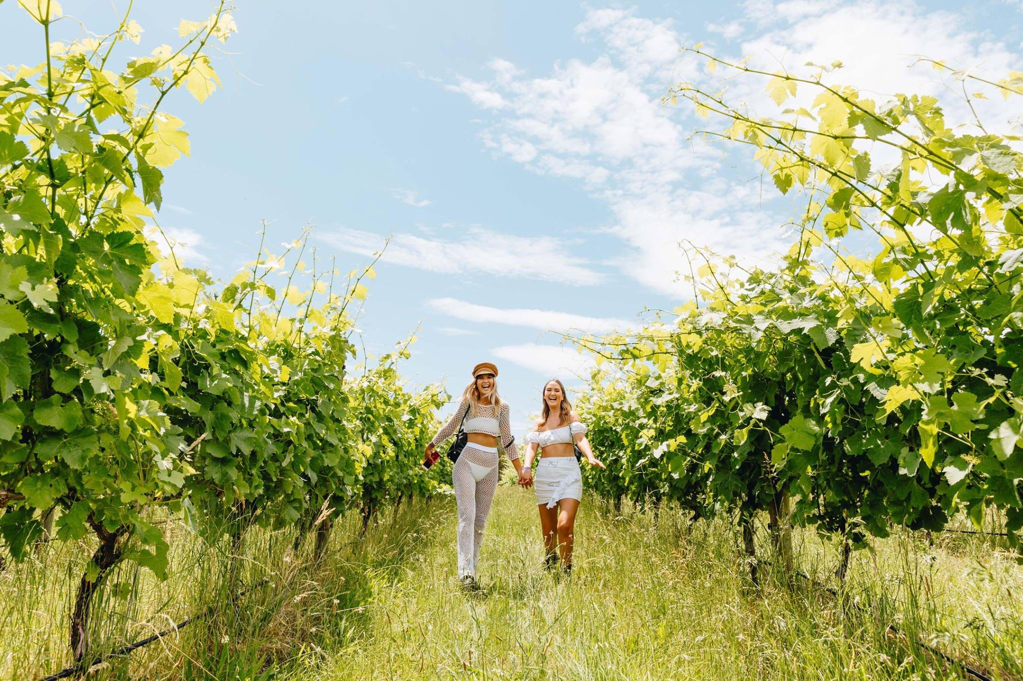 girls in vineyards.jpg