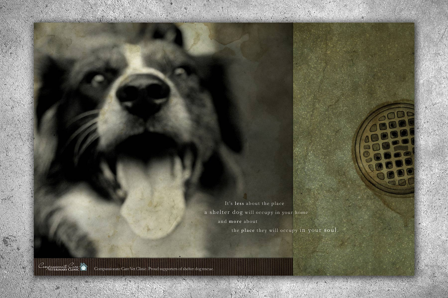 "bohan | Compassionate Care Veterinary Clinic ""Shelter Dog"" print"