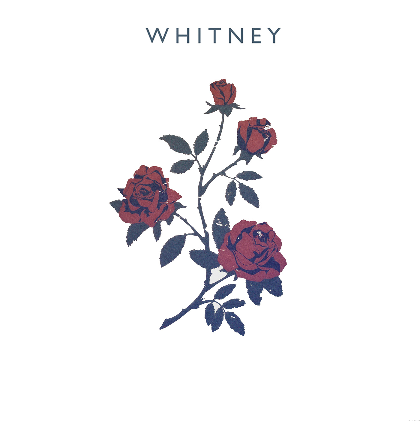 Whitney_Album_vector-copy.jpg