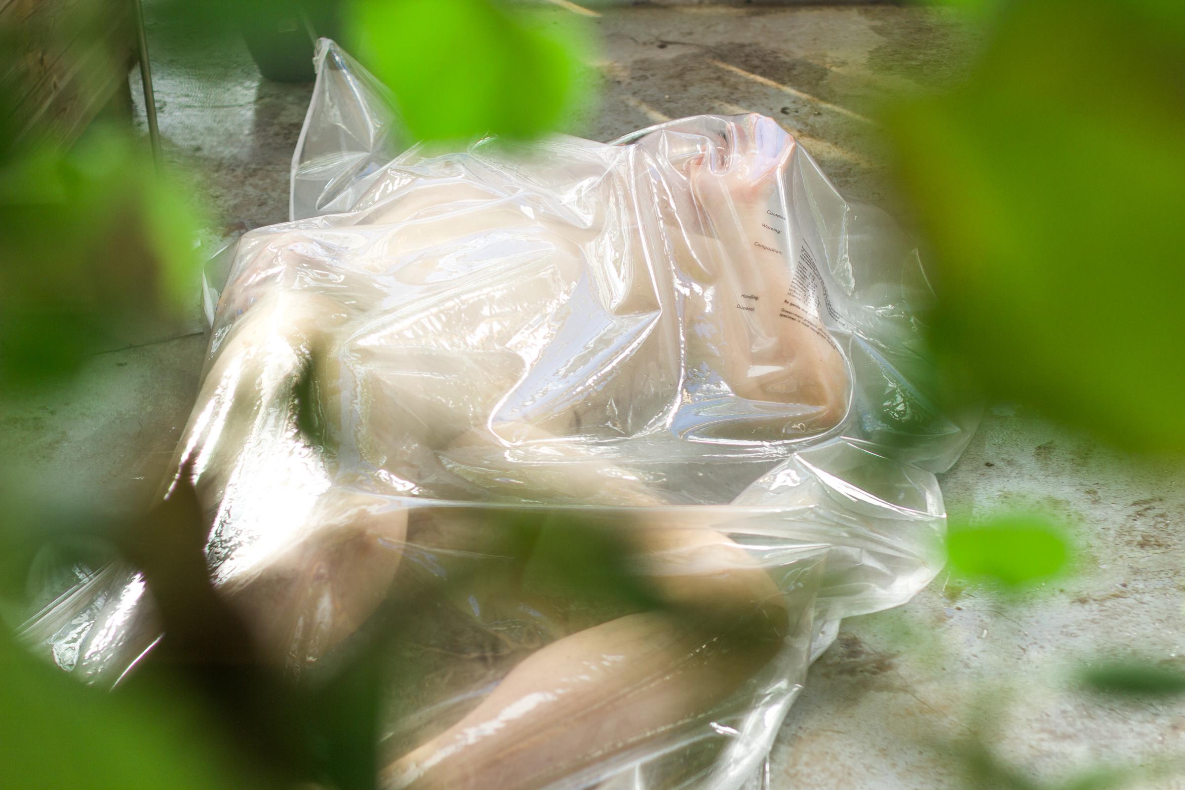 JacquelineGreenhouse-3170.jpg