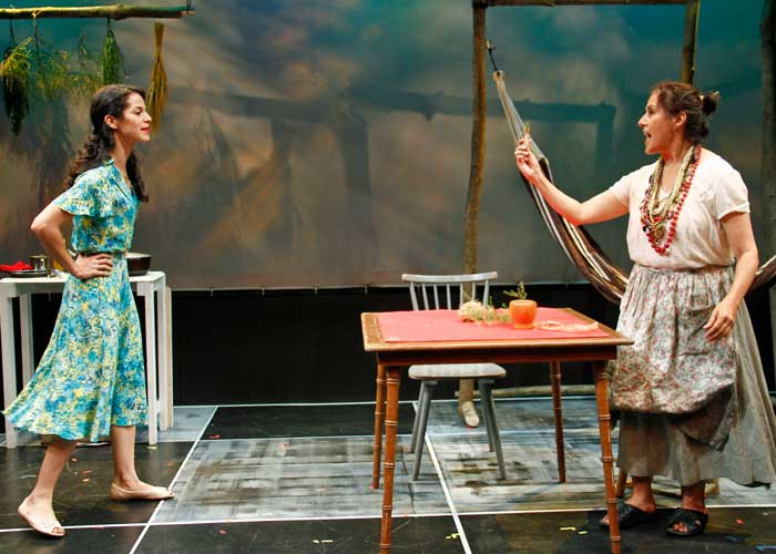 Shirley A. Rumierk and Socorro Santiago in LESSONS FOR AN UNACCUSTOMED BRIDE. Photo by Rahav Segev. Summer Shorts 2011.