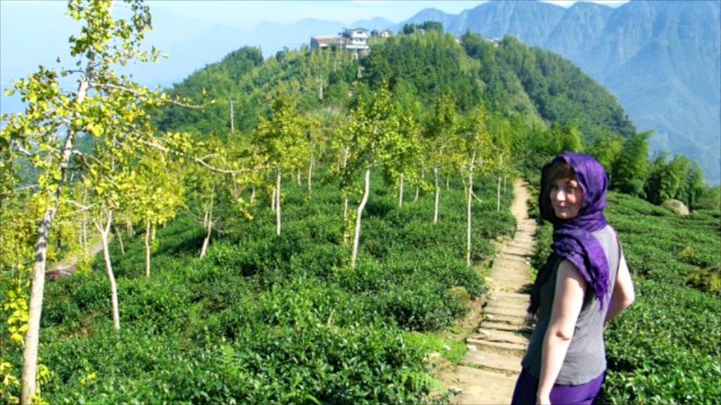 Lindsey climbing Ali Shan in Taiwan