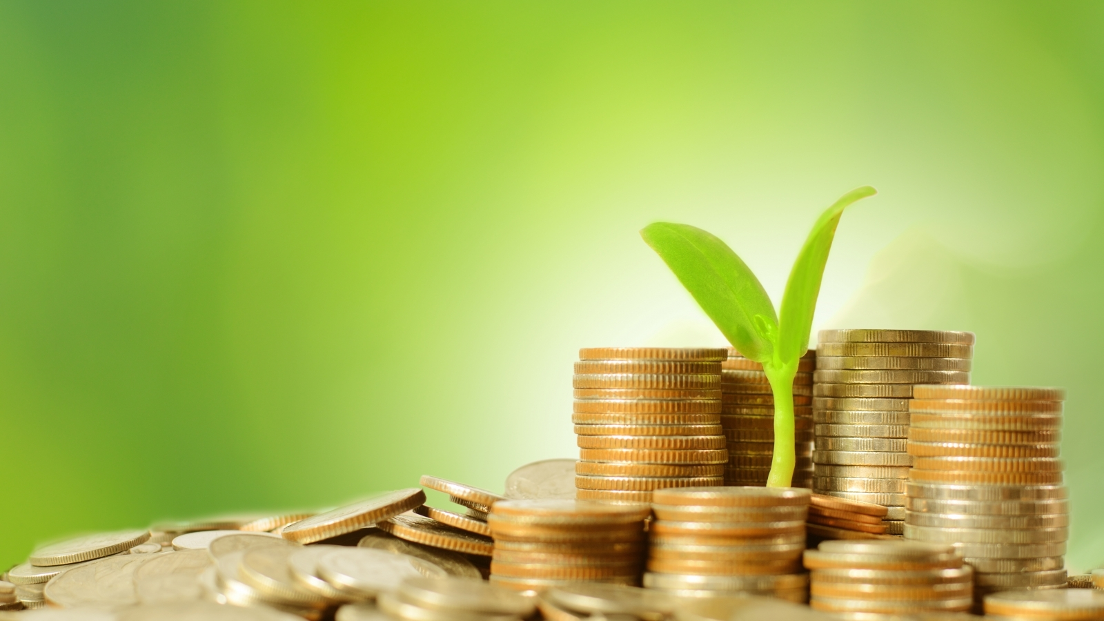 Growth of green finance