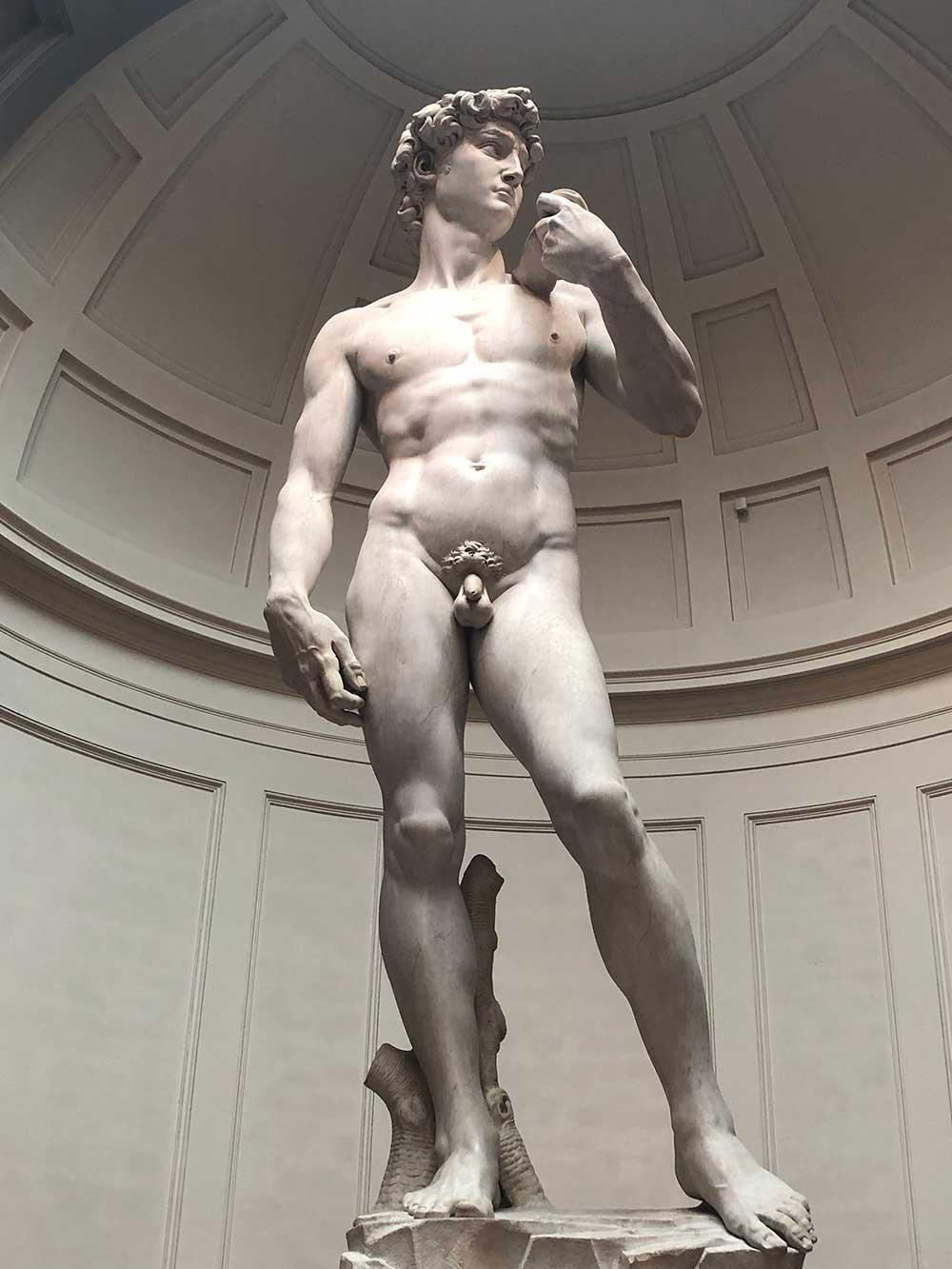 Original Statue of David