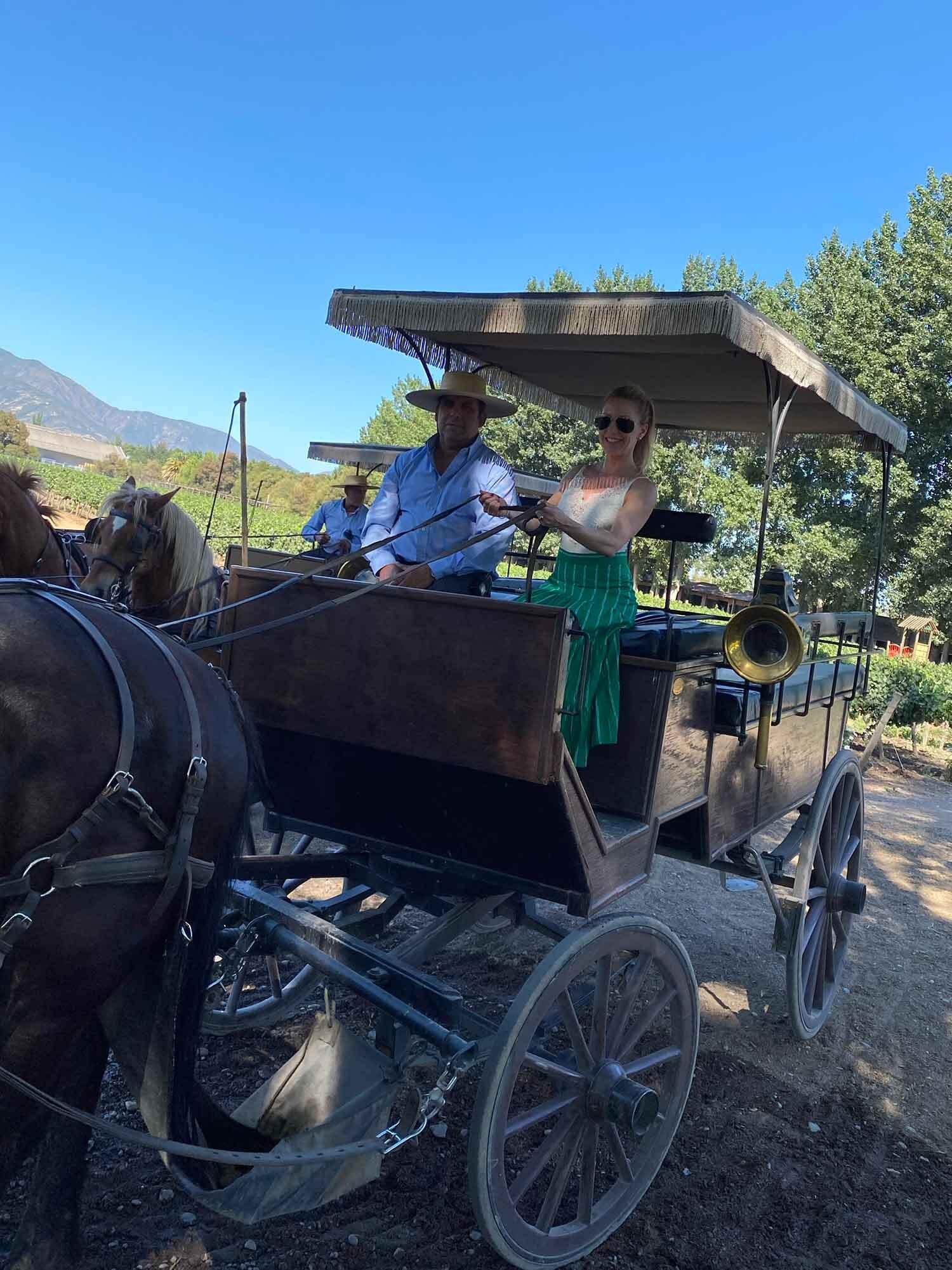 Viu Manent Wine Tour Horseride, Colchagua Valley, Chile