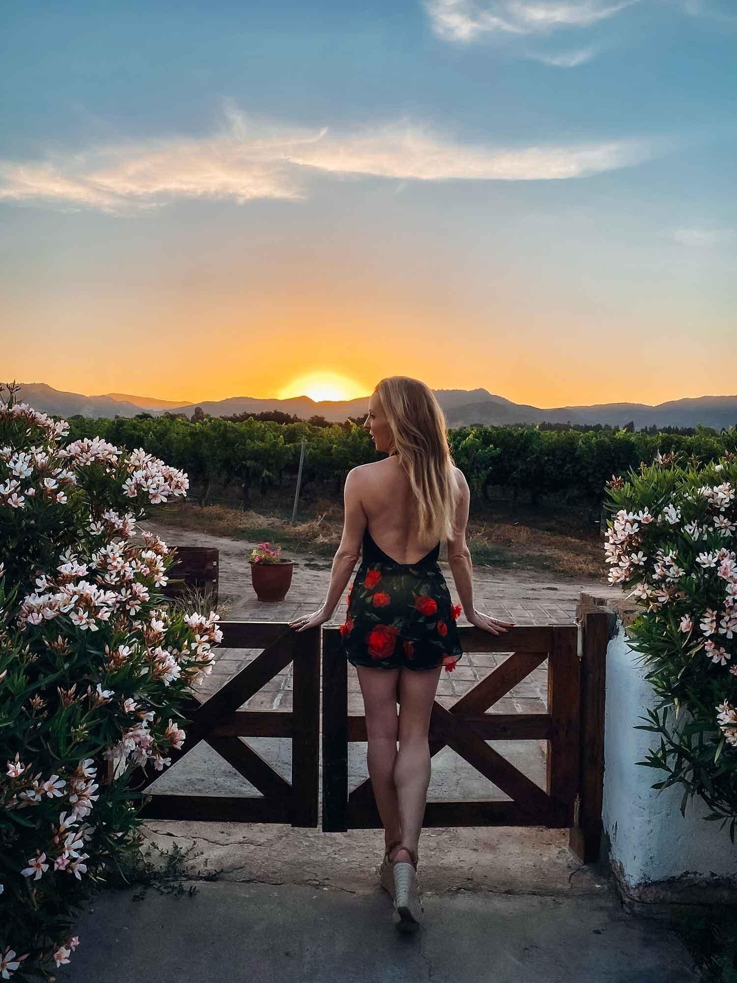Sunset at Vina Bello Restaurant, Santa Cruz, Colchagua Valley, Chile